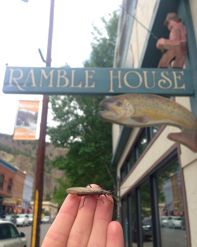 Ramble House